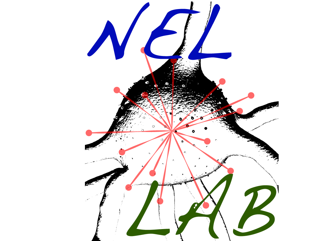 Neural Engineering Laboratory
